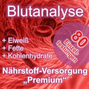 Blutanalyse Nährstoffversorgung Premium