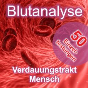 Blutanalyse Verdauungstrakt Mensch