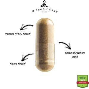 Vegane HPMC Kapsel