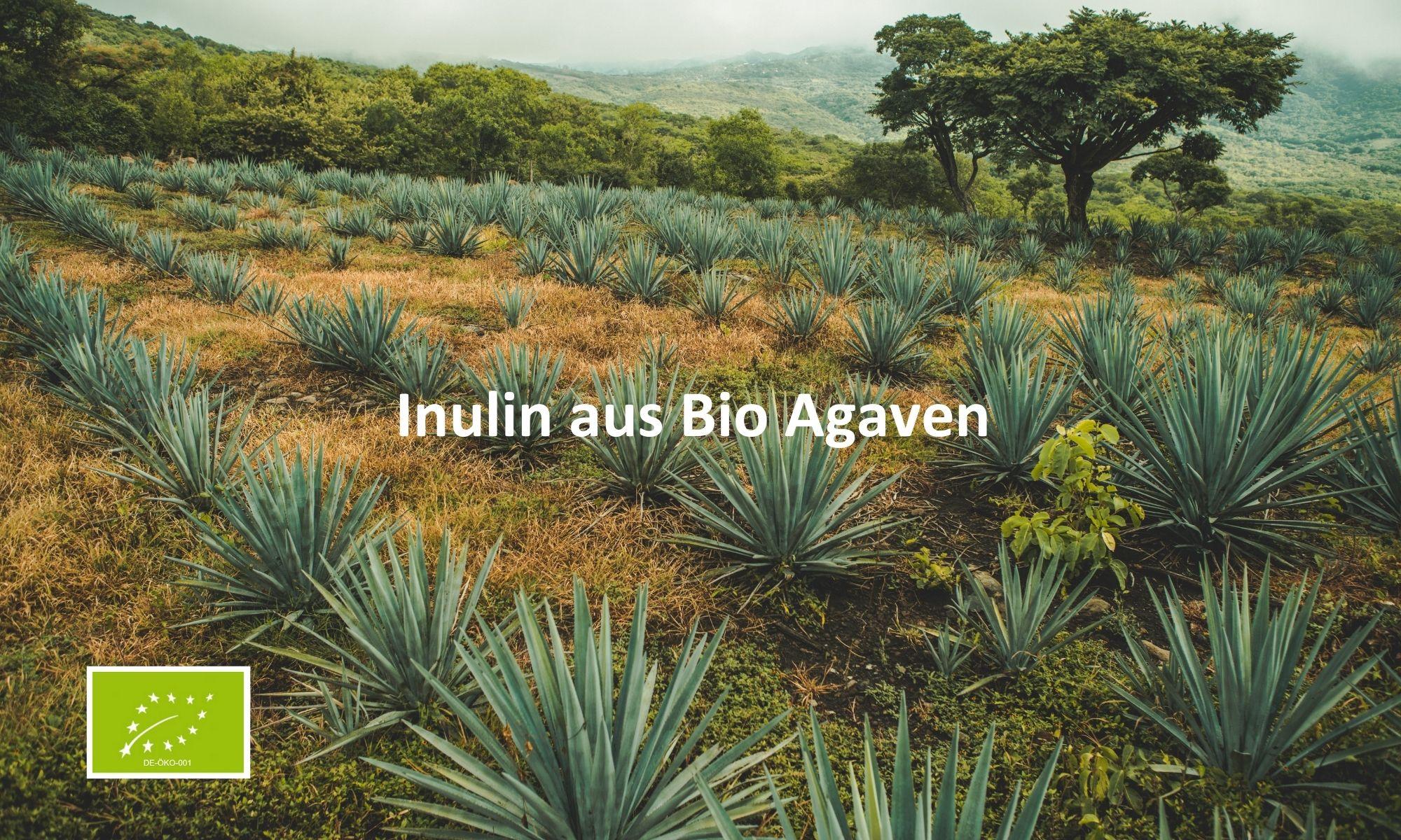 Bio Inulin